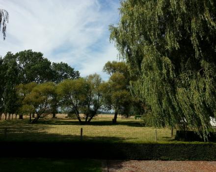 Vakantiewoning 't Moerland- zicht achterkant vakantiewoning